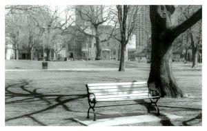 Lonely Bench by japanjd75