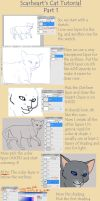 Scarheart's Cat Tutorial by Aira90