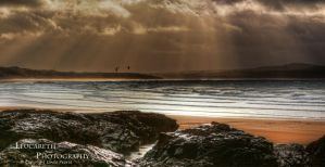 Kite Surfing The Rays by Leucareth