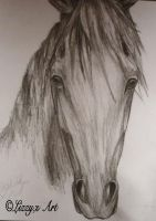 Charcoal by Lizbeth-Lund