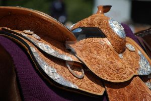 Show Saddle by MauserGirl