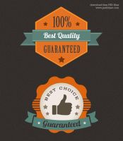 Colorful Premium Quality Web Badge (PSD) by psdblast