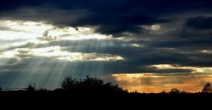 Sun rays by barchii