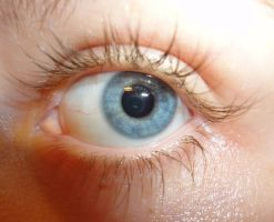 Eye Study: Iris 1 by PeacefulSeraph