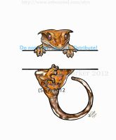Orange Tiger Crested Gecko - Hanging by styx-leagon