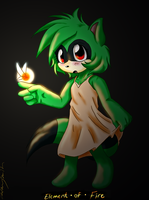Element of Fire -AT- by SpiritLeTitan