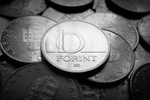 10 Forint Hungarian by NorbertKocsis