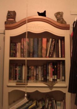 Bookcase by WolvenKnight