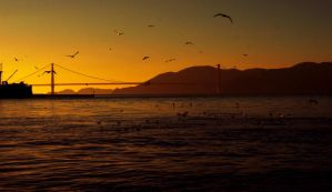 Sunset on Golden Gate Bridge01 by abelamario