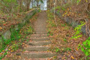 Abandoned Autumn Stairway by somadjinn