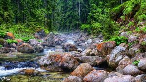 Mountain stream by miirex