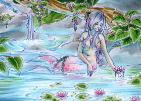 Water lily lagoon by NeliaViola