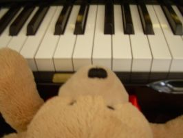 My bear playing de piano =P by Pink-star-15