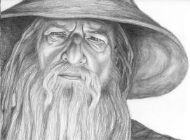 Gandalf the Grey by babymint34