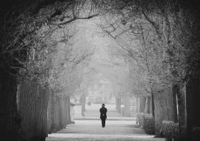 lonely walk by mariomencacci