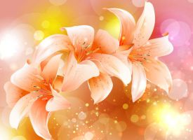 Fancy-Colorful-Flowers-Background by vectorbackgrounds