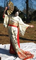 Geisha Fan 8 by themuseslibrary