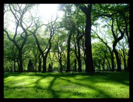 Shadows in Central Park by clockworkpurple