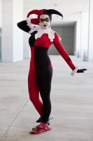 Introducing Harley Quinn by miss-kitty-j