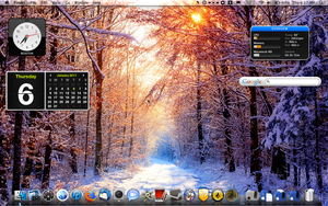 OS 10 desktop Jan2011 by Wretched--Stare
