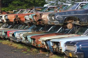 Where Mopars go to die by finhead4ever