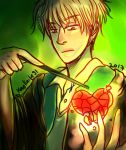 HP: Crushed Heart by LiniAriva