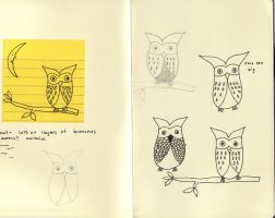 yea owls by cather