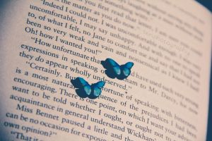 123/365 Butterflies by photographybyteri