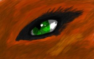 Squirrelflight's eye: warriors by iamblossom