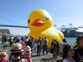 World's Largest Rubber Ducky by ShipperTrish