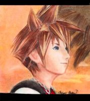 Sora by Gullwing45