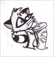 Racoon and a Soda by looking-at-the-stars