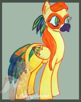 Sun conure pony adopt by Fortitudine-Shelter