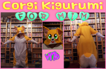 Corgi Kigu by VimtoWartooth