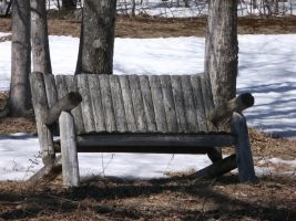 Old Country Bench in Spring by TheGreatWiseAss