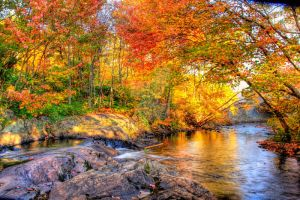 HDR Autumn River by Nebey