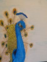 Peacock watercolor pencil painting by LexyLou16