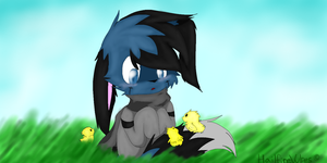 Chick Magnet by Hailsyn
