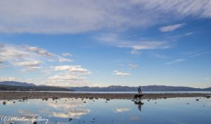 Lake Tahoe reflections150418-38 by MartinGollery