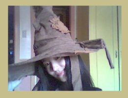 sorting hat on a muggle head by peachelle