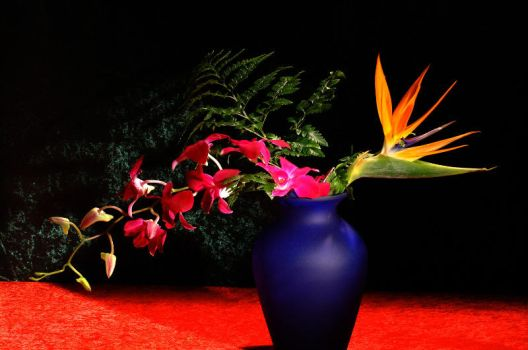 Orchids and Birds of Paradise by Art-Photo