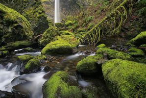 Columbia River Gorge by Brettc