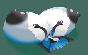 Commission - Flattened Blue-jay by BoobsTitsandAss