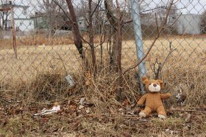 The Lost Teddy by JustinSquires