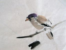 Sparrow on a Branch by chinesepaintings