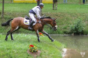 3DE Cross Country Water Obstacle Series VII/13 by LuDa-Stock