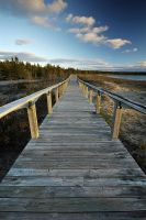 Providence Bay Boardwalk by tfavretto