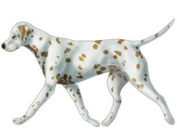 Orange Spotted Dalmatian by dalmatianluver