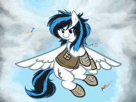 Pegasi Only by Ruby-Sunrise