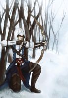 Assassin's Creed 3 by BlackKitty68